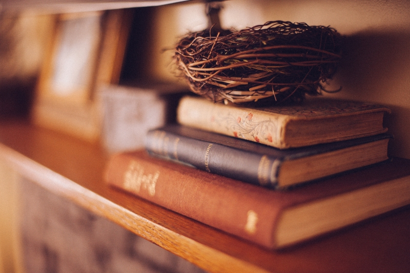books-and-birds